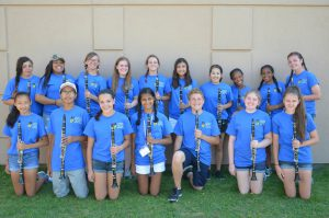 DEHS Clarinet Section 2016 2017