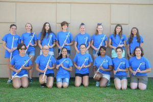 DEHS Flute Section 2016 2017